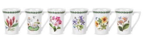 Set of 6 Assorted Motif Mandarin Mugs
