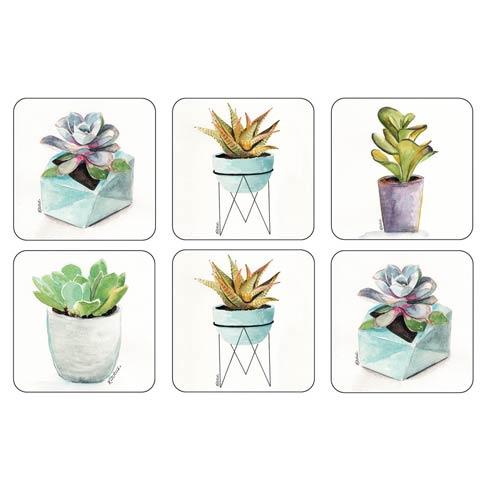 $15.00 Succulents Coasters - Set of 6