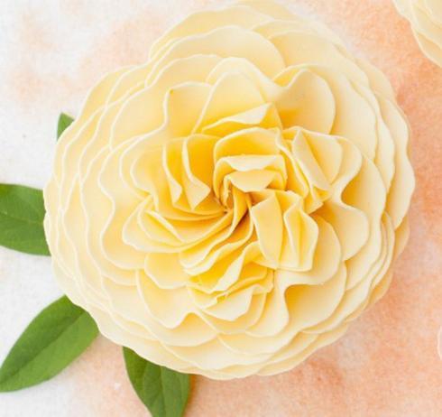 $39.95 Lets Be Friends Garden Rose Soap