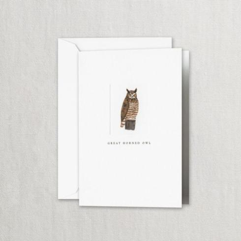 $20.00 Great Horned Owl Folded Notes