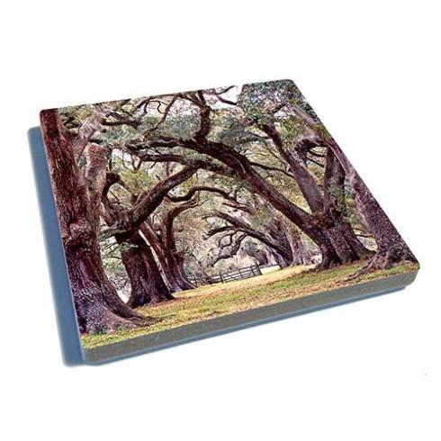 Coaster-Oak Alley-Color collection with 1 products