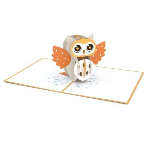 $13.00 Pop up Card-Owl