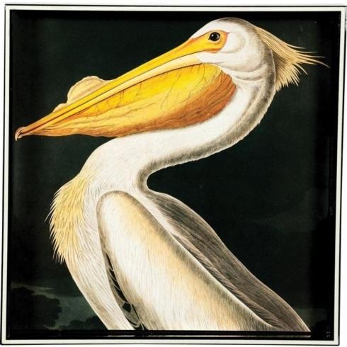 White Pelican Square Tray