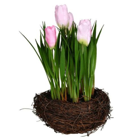 $15.00 Tulips in Nest