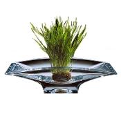 Crystal Planar Bowl
