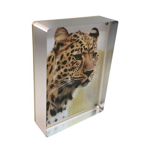 Canetti Design Group   Silver Prestige Magnet Frame 5x7 $70.00