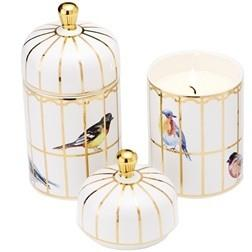 Plum Southern Exclusives   Candle Gilded Cage $29.95