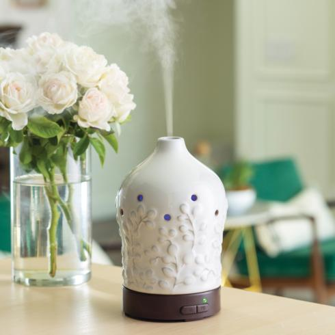 Plum Southern Exclusives   Oil Diffuser - White Willow $37.50