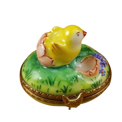 $199.00 Small Chick Hatching