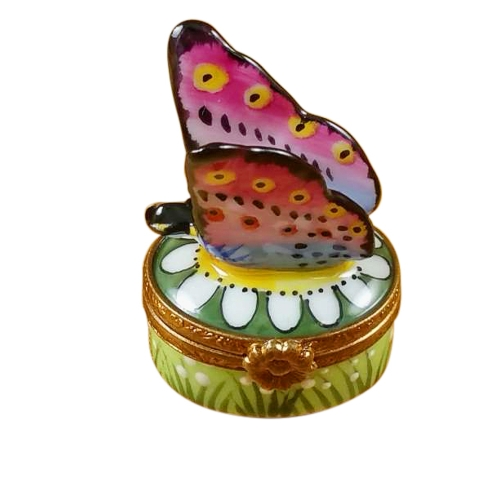 $229.00 Mini Butterfly On Daisy