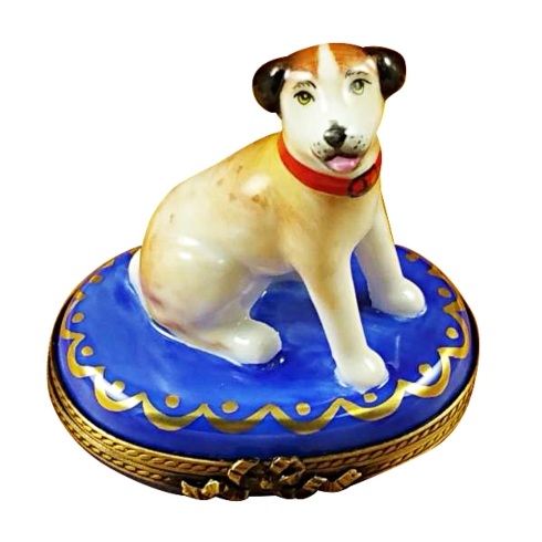 $259.00 Jack Russell