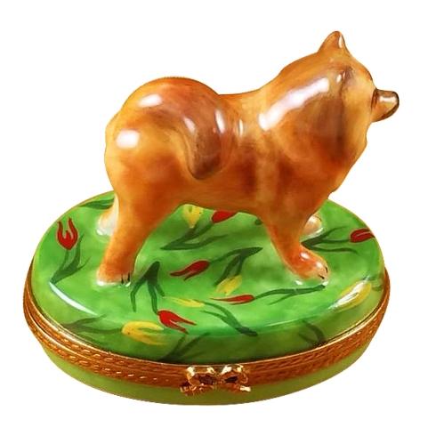 $229.00 Chow Chow