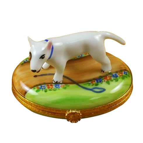 $259.00 Bull Terrier