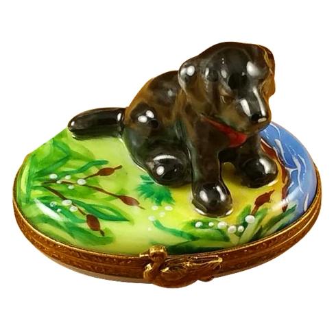 $299.00 Black Labrador