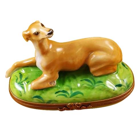 $259.00 Greyhound