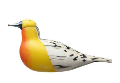 $500.00 Blackburnian Warbler, FinnFest 2017
