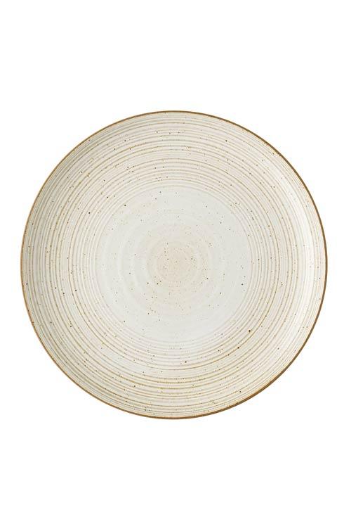 Dinner Plate 10 1/2 in image