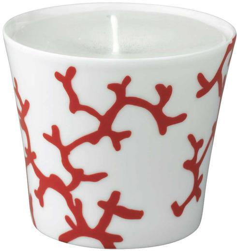 Raynaud Cristobal Coral Candle Pot $100.00