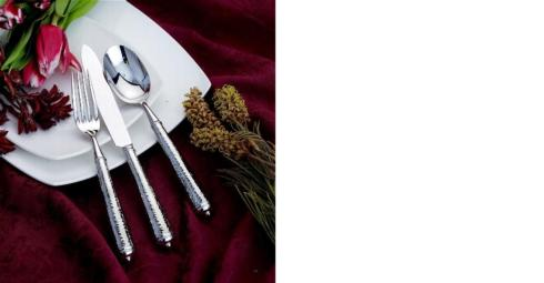 $85.00 Leopardo Stainless 5 Piece Place Setting