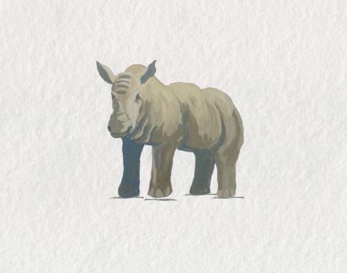 $40.00 11x14 Baby Rhino Nursery Art Print