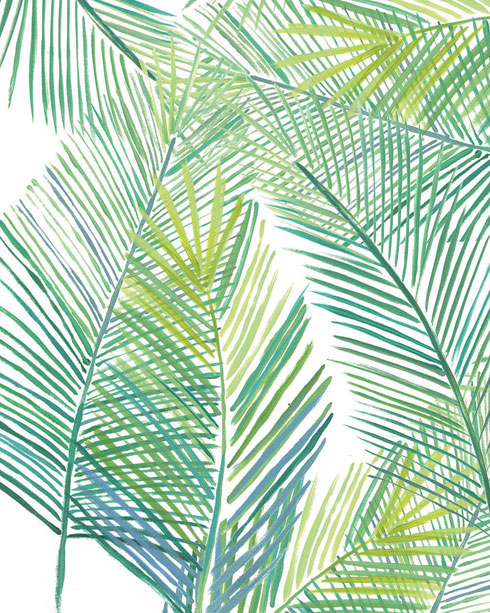 $40.00 11x14 Tropical Fern Print