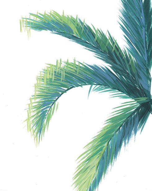 $40.00 11x14 Palm Tree Art Print