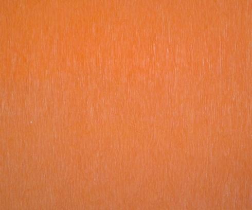Tangerine - Set of 12