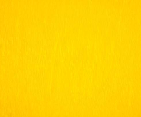 $23.00 Yellow - Set of 12