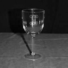 $10.95 Acrylic Wine Glass