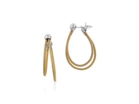 $295.00 Hoop Earrings