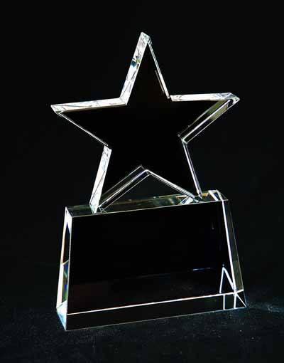 $177.00 Star award