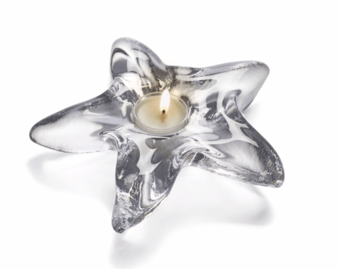 Starfish Tealight collection with 1 products