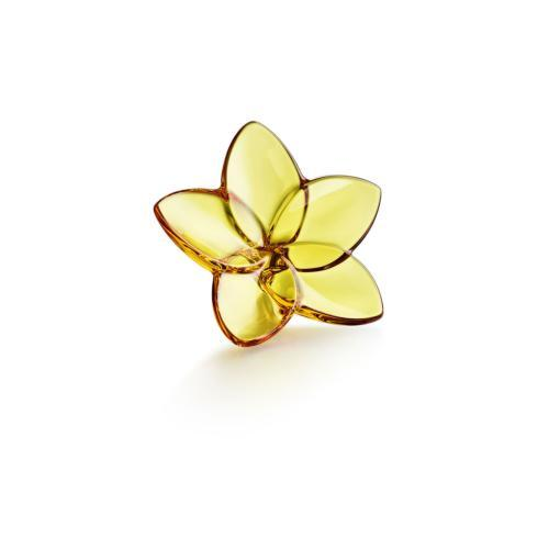 $120.00 Bloom Collection Amber