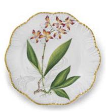 Ivy House Exclusives   Pinto Paris Histories d\'Orchidees Dinner Plate Orange $350.00