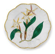 Ivy House Exclusives   Pinto Paris Histories d\'Orchidees Dinner Plate Yellow $350.00