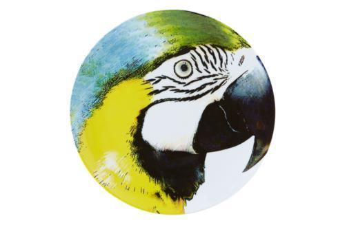 Charger Plate Yellow Bellied Macaw
