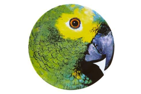 $105.00 Charger Plate Parrot