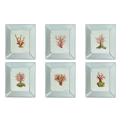 Mirror Framed Coral Print collection with 1 products