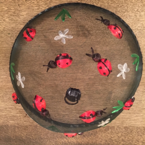 Lady Bug Food Dome collection with 1 products