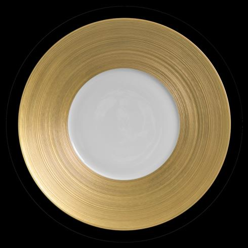 Hemisphere Golden Charger