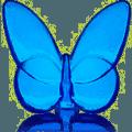 $140.00 Lucky Butterfly Sapphire Blue
