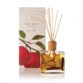 BB & G Exclusives Special Items - Candles & Diffusers! Spicy Apple Botanical Reed Diffuser