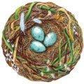 $26.00 Woodland Nest Paper Placemats Die-Cut