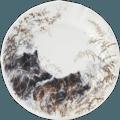 Dessert Plate - Boar
