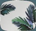 Gien Jardins Extraordinaires Vegetal Organic Square Plate, Medium