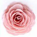A'marie's Bathing Petal Flowers Vintage Rose