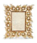 Ferdinand Peacock Feather Frame - Golden image