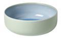 10 Rice Bowl