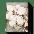 Sid Dickens Magnolia