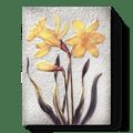 109 Daffodils